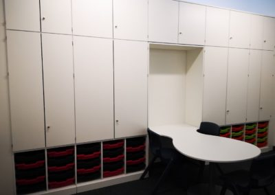 storage wall with desks for Hamadryad